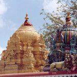 சிவகாசி ஸ்ரீ மாரியம்மன் கோவில் வருஷாபிஷேகம்